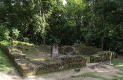 Пирамида и висок в парке Tikal Sightseeing объект в Гватемале с майяскими висками и руинами церемонии Tikal старое Стоковая Фотография