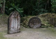 Пирамида и висок в парке Tikal Sightseeing объект в Гватемале с майяскими висками и руинами церемонии Tikal старое Стоковые Изображения RF