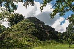 Пирамида и висок в парке Tikal Sightseeing объект в Гватемале с майяскими висками и руинами церемонии Tikal старое стоковое изображение rf