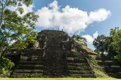 Пирамида и висок в парке Tikal Sightseeing объект в Гватемале с майяскими висками и руинами церемонии Tikal старое Стоковое Изображение