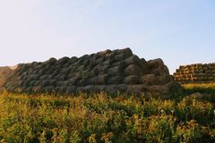 Пирамида составлена шариков сена в лучах захода солнца Стоковое Изображение