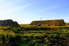 Пирамида составлена шариков сена в лучах захода солнца Стоковое фото RF