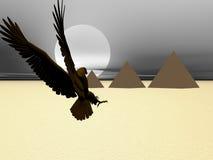 пирамидка орла Стоковые Фото