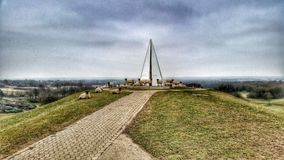 Пирамида света парка Campbell с овцами Стоковые Фотографии RF