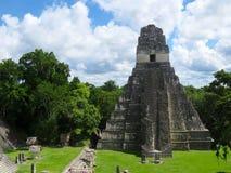 Пирамида 3 Tikal Стоковое Изображение RF