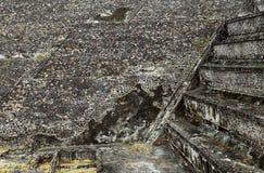 Пирамиды в Teotihuacan, Мексике Стоковая Фотография