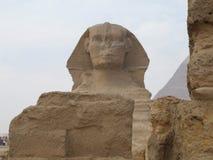 Пирамиды Гизы Стоковая Фотография