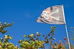 пират флага старый Стоковая Фотография