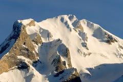 Пирене в Col D Aubisque стоковая фотография rf
