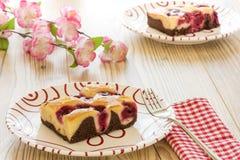 2 пирога на плите Стоковое фото RF
