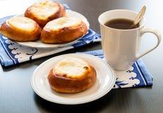 Пироги печенья творога, vatrushka в русской кухне. Стоковое Изображение RF