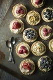 Пироги сыра и ягод Стоковые Изображения RF