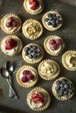 Пироги ягоды Стоковые Фотографии RF
