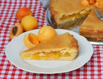 Пирог абрикоса Стоковое Изображение RF