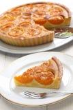 Пирог абрикоса Стоковая Фотография
