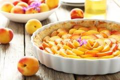 Пирог абрикоса Стоковые Фотографии RF