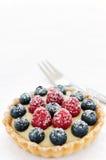 пирог лакомки плодоовощ Стоковые Изображения