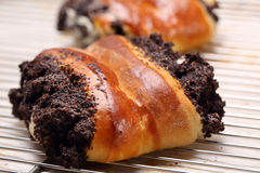 Пирог бейгл с маковыми семененами Стоковое Изображение RF