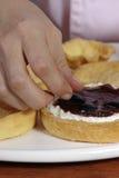 Пирог виноградины Стоковое фото RF
