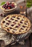 Пирог вишни Стоковые Фотографии RF