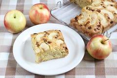 Пирог изюминки Яблока Стоковые Изображения RF