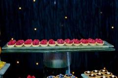 Пирог пирога свежих фруктов с с поленикой Стоковые Изображения