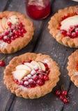 Пирог с яблоками и красной смородиной Стоковые Фото