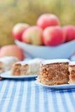 Пирог-торт Яблока и штрудель яблока Стоковое фото RF