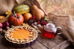 Пирог традиционной домодельной тыквы кислый здоровый Стоковые Фотографии RF