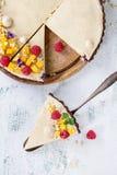 Пирог шоколада с манго и полениками Стоковое Изображение RF