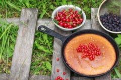Пирог ягоды на деревенской деревянной предпосылке на траве Стоковые Изображения