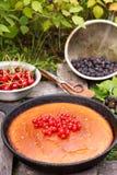 Пирог ягоды на деревенской деревянной предпосылке на траве Стоковое Изображение RF