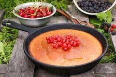 Пирог ягоды на деревенской деревянной предпосылке на траве Стоковое Изображение