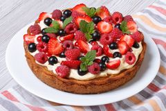 Пирог ягоды с клубниками, полениками, смородинами, мятой стоковое фото