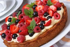 Пирог ягоды украшенный с клубниками, полениками, мятой Стоковое фото RF