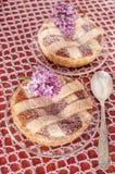 Пирог (crostata) с сливк mascarpone и шоколада Стоковые Изображения RF