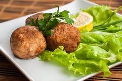Пирожки мяса в плите с салатом и петрушкой Стоковая Фотография