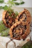 Пирожки сделали ‹â€ ‹â€ из муки рож заполненное с champignons и oni Стоковое Фото