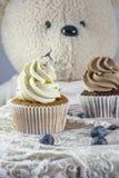 2 пирожного ванильных и шоколада с голубиками Стоковое Изображение