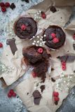 Пирожное и поленика шоколада Стоковое Фото