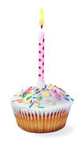 Пирожное с свечой дня рождения Стоковое Изображение RF