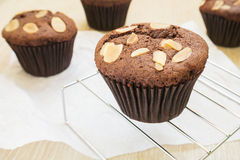 Пирожное шоколада с миндалиной стоковое фото rf