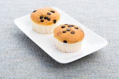 Пирожные обломока шоколада Стоковые Фото