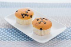 Пирожные обломока шоколада Стоковое Фото