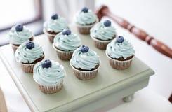 Пирожные с голубикой Стоковые Изображения RF