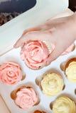Пирожные с розовой и желтой сливк в бумажной коробке на коричневом backgr Стоковое Изображение