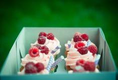 Пирожные с сливк и поленикой Стоковая Фотография