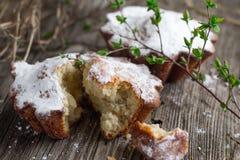 Пирожные творога стоковые фото