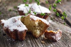 Пирожные творога Стоковые Изображения RF