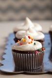 Пирожные шоколада изысканные с брызгают и замораживать Стоковые Изображения